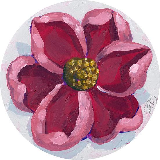 'Mini Bloom #1'