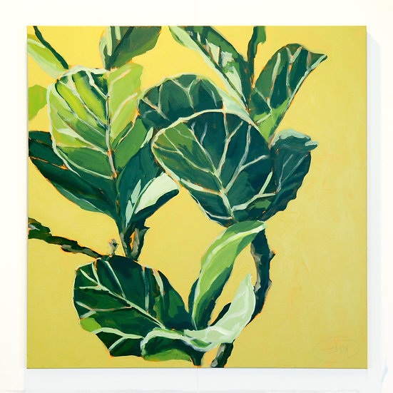 'Foliage III / Fiddle-Leaf Fig' Original Painting by Abbey Merson