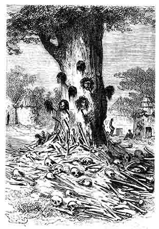 L'arbre des cannibales - Cinq semaines en ballon