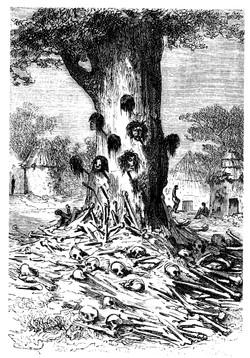 L'arbre des cannibales - Cinq semaines en ballon.jpg