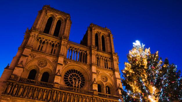 gigante-Paris-delante-Notre-Dame_TINIMA20121120_0131_5.jpg