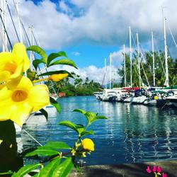 Beauty Les Trois Isles