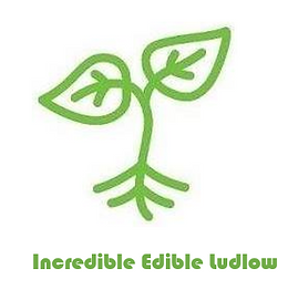 incredible edible ludlow 2.png