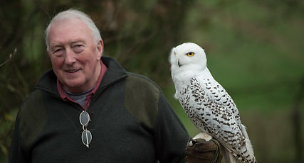 Raptors workshop image guest with snowy owl