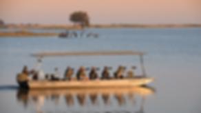 pangolin boat.png