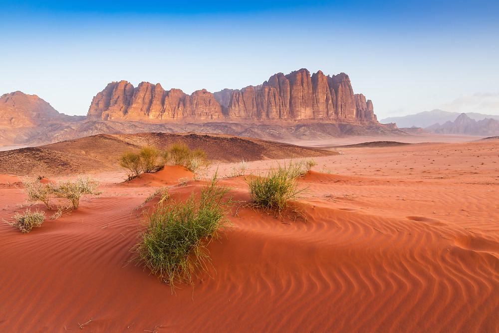 Jordan Photography Tour | Trai Anfield Photography Safaris | Wadi Rum By Day