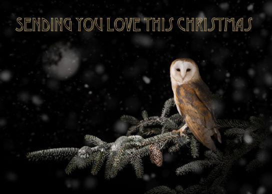 Love At Christmas Card_WEB_sRGB.jpg