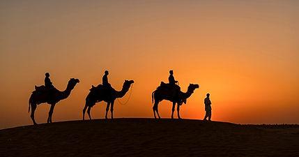camel safari-3866_WEB_edited.jpg
