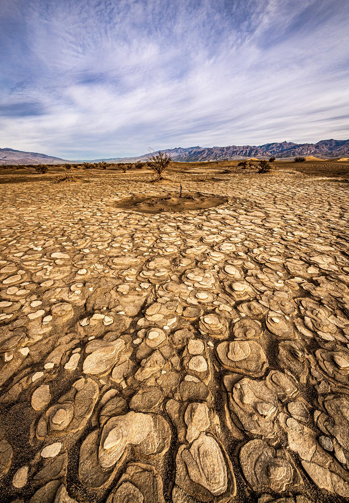 Death Valley detail_WEB_DSC7884