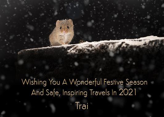 Snow Mouse Card.jpg