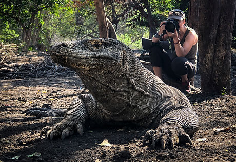 Trai Anfield Photography Safaris komodo