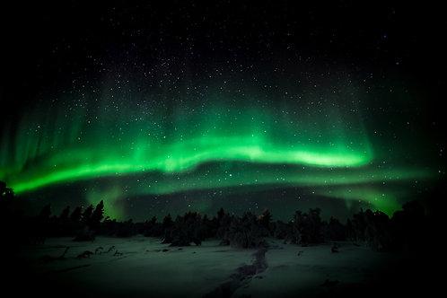 Aurora Finland Davvi Hill 22/01/2014