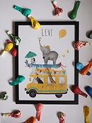 Naamposter Levi.jpg