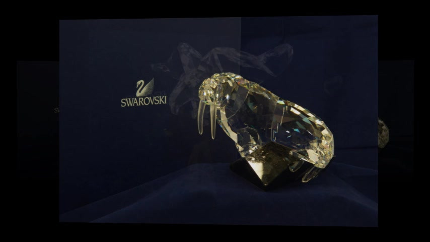SWAROVSKI 02 480.mp4
