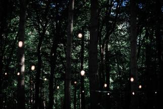Roos Jooren Photography-63 (1) (1).jpg
