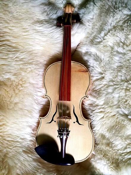 Violino Customizzato su richiesta del cliente