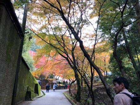 京都散策…第2弾