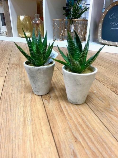 Gisela Graham Faux Succulent Plant 17cm