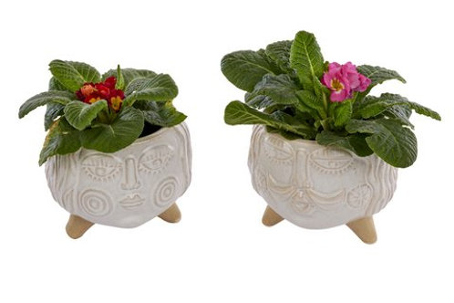 Set of Two Face Planters Mr & Mrs
