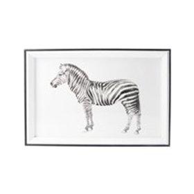 Gisela Graham Acrylic Framed Black and White Zebra Print
