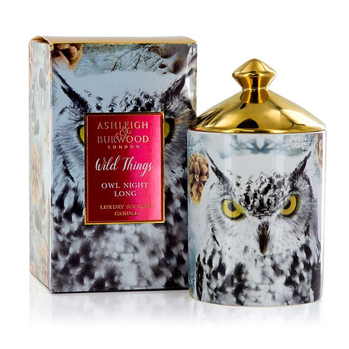 Ashleigh and Burwood Wild Things -  Owl Night Long Candle
