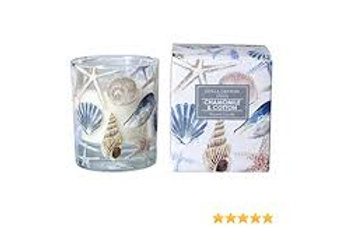 Gisela Graham Seasalt & Sage Candle Pot