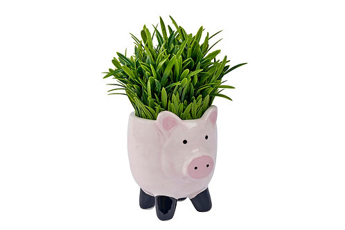 Porky Pig Ceramic Planter