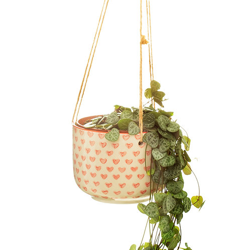 Sass and Belle Red Love Heart Hanging Planter