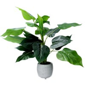 Gisela Graham Faux Philodendron in Pot Large 46cm