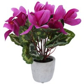 Gisela Graham Faux Magenta Cyclamen in Pot 30cm
