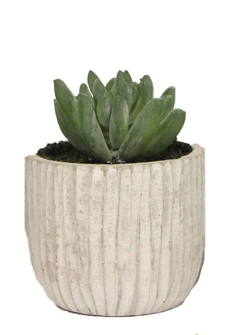 Gisela Graham Mini Faux Succulent - Flower
