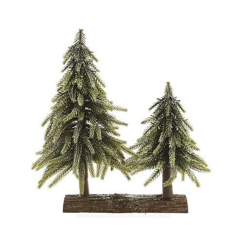 Fir Trees on Wooden Log
