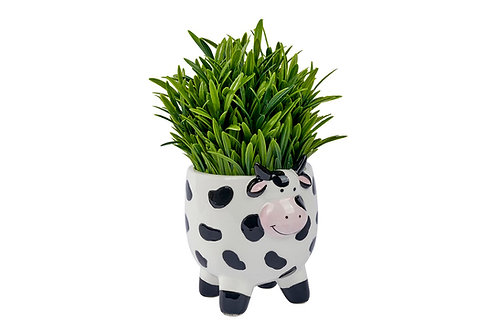 Moo Cow Ceramic Planter