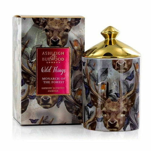 Ashleigh and Burwood Wild Things - Monarch of the Forest Candle