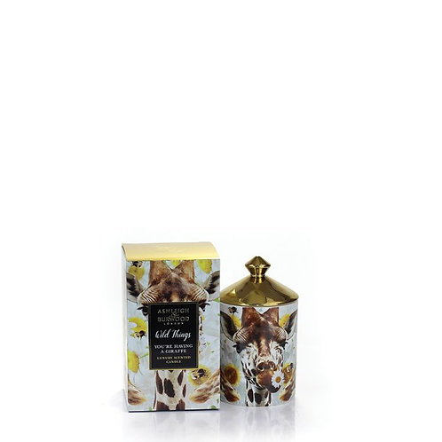 Ashleigh and Burwood Wild Things - You're Having a Giraffe Candle