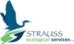 strauss eco services