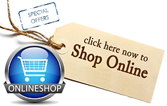 shop-online-store-large2.png