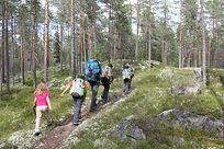 Trekking Sweden