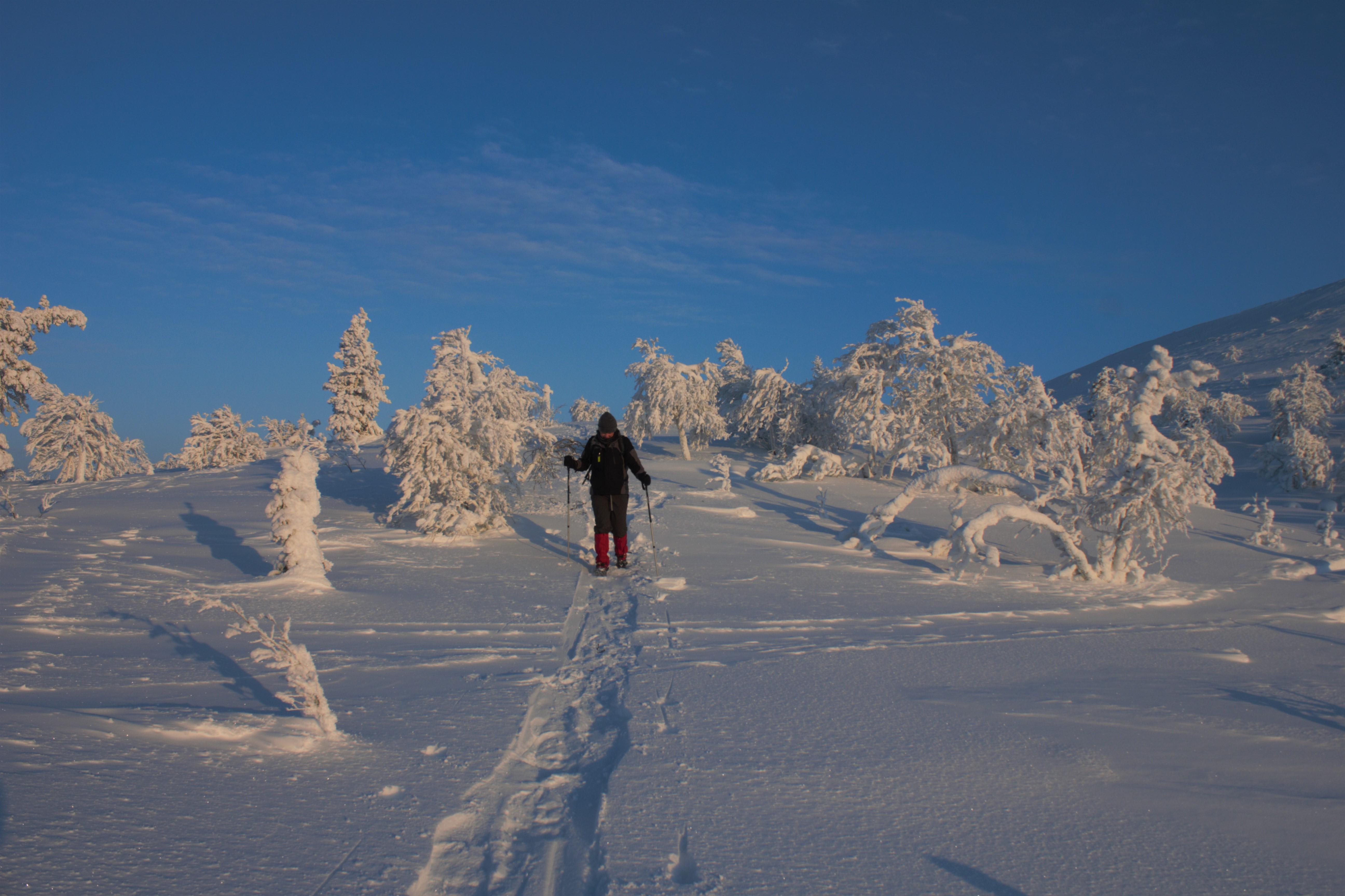 Randonnées en raquettes de neige