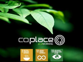 Desenvolvimento Sustentável nos negócios