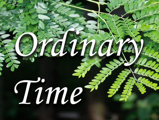 6th Sunday in Ordinary Time - Cycle B