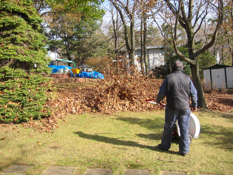 landscaping 014.jpg