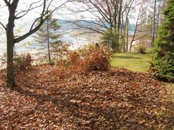 landscaping 013.jpg