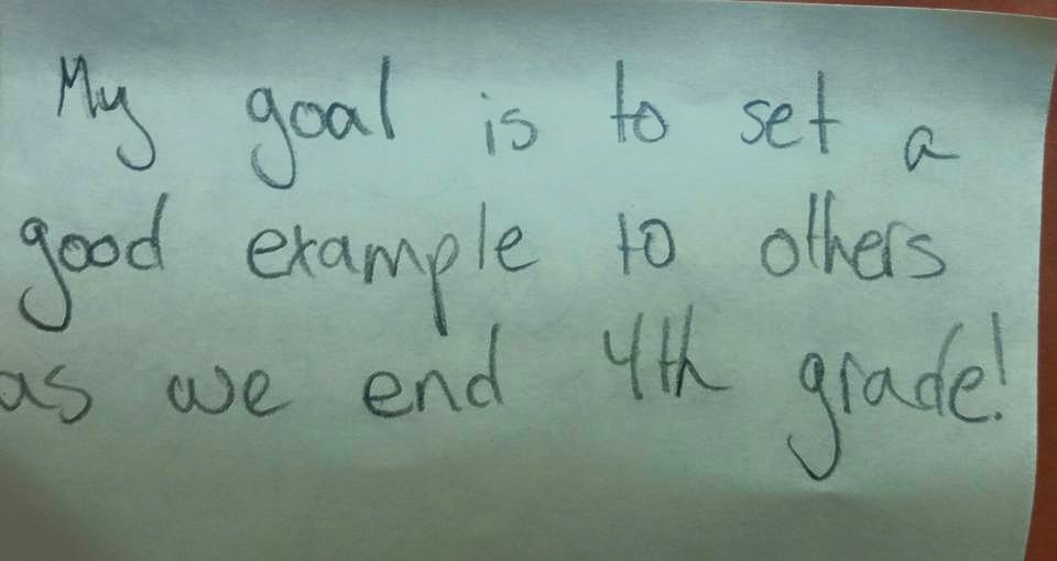 Goal Setting Mid-year