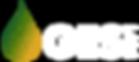 GES-Logo-White-Transparent-Low-Resolutio
