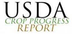 Crop Progress Report As Of 11-2-15