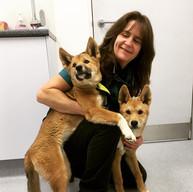 Robin and Dingo Pups