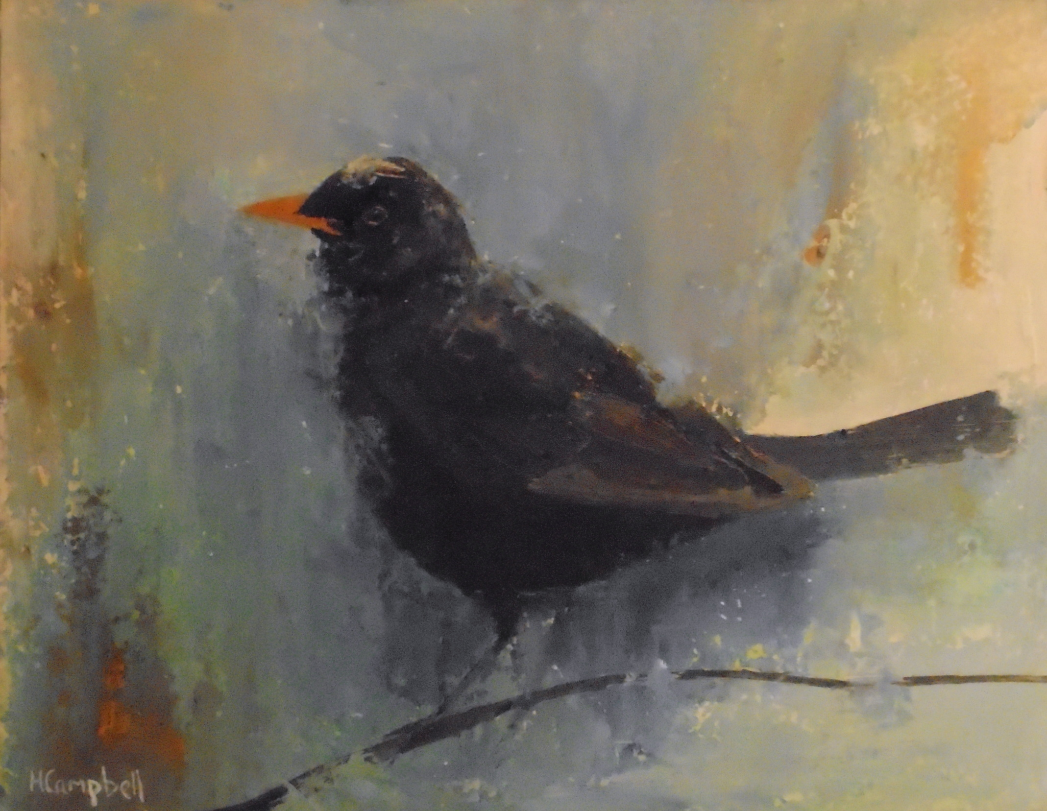 Blackbird -SOLD