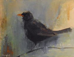 Blackbird -SOLD