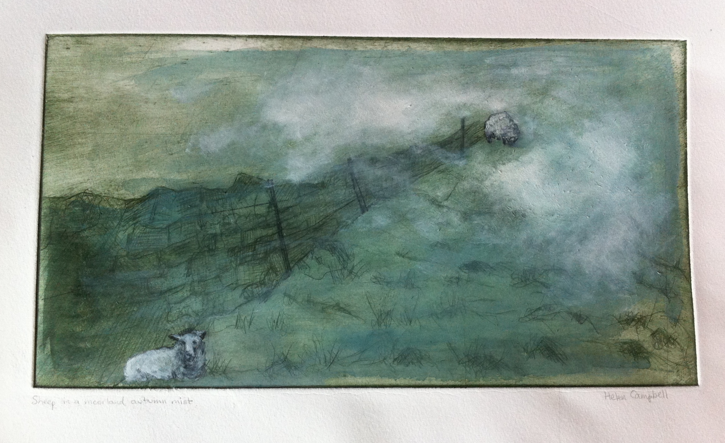 sheep in a moorland autumn mist